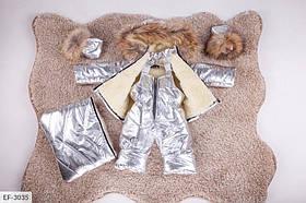 Детский зимний комбинезон тройка серебро SKL11-260902