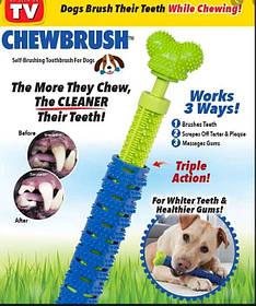 Зубная щетка для собак Chewbrush SKL11-236828