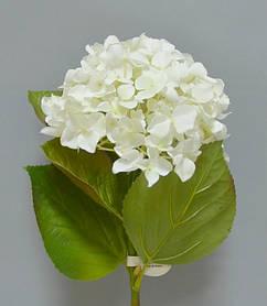 Цветок Гортензия SKL11-209184