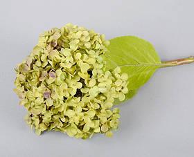 Цветок Гортензия SKL11-209192