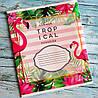 Тетрадь школьная в косую линию 12 листов Лидер, фламинго, фото 6