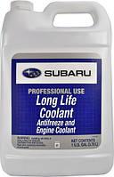 Концентрат антифризу Subaru Antifreeze Lonf Life Coolant 3.785 л
