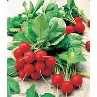 Семена редиса Джолли / Jolly, 500 грамм, ж/б банка, Clause (Франция)
