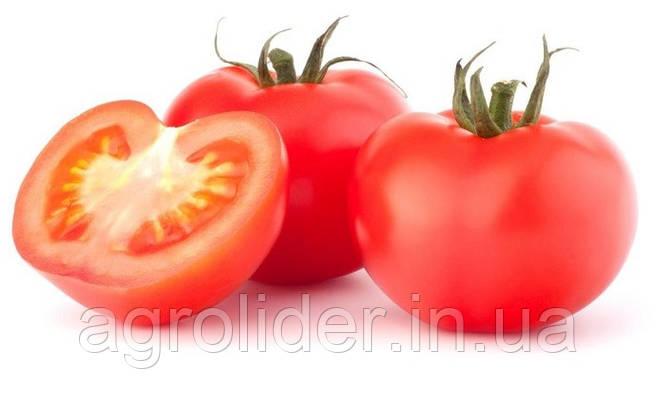 Как выращивать томаты?