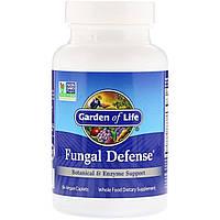 Ферментная поддержка и растительная защита от грибков, Fungal Defense, Garden of Life, 84 вегетарианские