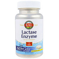 Лактаза, Lactase Enzyme, KAL, 250 мг, 60 гелевых капсул