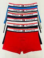 ЧОЛОВІЧА НИЖНЯ БІЛИЗНА Tommy Hilfiger  труси, боксери (БАВОВНА, 6 КОЛЬОРІВ) РЕПЛІКА