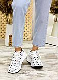Кросівки біла шкіра зірки 7713-28, фото 2