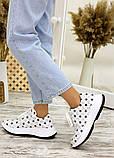 Кросівки біла шкіра зірки 7713-28, фото 3