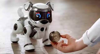 Роботи-тварини