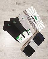 Набор мужских носков Lacoste - 12 пар в подарочной коробке в фирменной упаковке лакоста / носки
