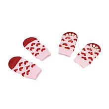 Антиковзні шкарпетки для собак Taotaopets 331 Сердечка S бавовняні