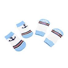 Антиковзні шкарпетки для собак Taotaopets 331 Якір L бавовняні