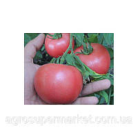 Розовый томат Пембола Детерминантный гибрид 1000семян BT TOHUM