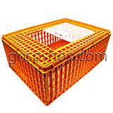 Маленький глубокий ящик для перевозки птицы с раздвижной верхней дверкой 77х57х32, фото 2