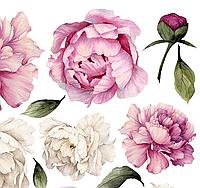 Набор виниловых мини наклеек Акварельные бело-розовые пионы от 10 до 20 см наклейки цветы матовая