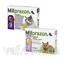 Таблетки от глистов для котят и кошек Милпразон (Milprazon) весом 0.5-2 кг