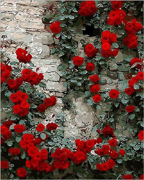 Картина малювання за номерами Mariposa Вьющаяся роза MR-Q108 40х50 см Цветы, букеты, натюрморты набор для росписи краски, кисти,