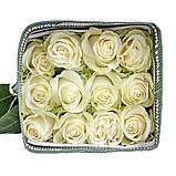 Роза Мондиаль Эквадор. Roses Reedom Ekvador, фото 6