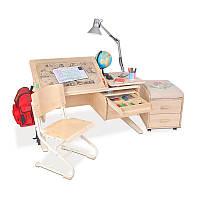 Растущая ортопедическая парта с разделенной столешницей 120х55 см Деревянный письменный стол ТМ Дэми СУТ.17-14