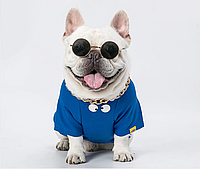 Окуляри для собак середніх та великих порід Multibrand в золотій оправі, чорні (скло)