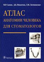 Сапин, Никитюк, Литвиненко: Атлас анатомии человека для стоматологов