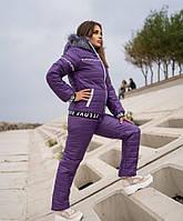 Жіночий лижний костюм на хутрі батал SKL11-279626