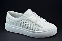 Жіночі літні спортивні туфлі шкіряні кеди білі Alexandro 21007