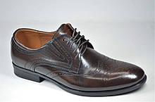 Чоловічі шкіряні туфлі полуброги коричневі Nord But 679