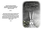 Ведмедиця і Кролик. Книга 2. Що за шкідник у ліс проник? Джуліан Ґоф, фото 3
