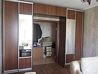 Шкаф купе на заказZ-279