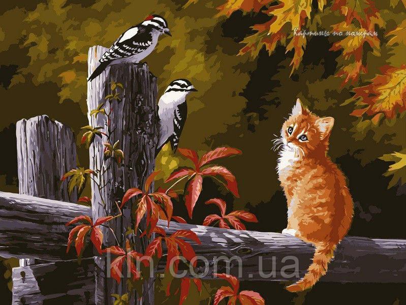 Картина по номерам Babylon Котенок и птички на заборе VP134 30 х 40 см