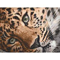 """Набір для розпису """"Леопард"""" 40*50 см 11635-AC"""