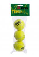 Teloon Мяч для большого тенниса T801 Салатовый 3шт