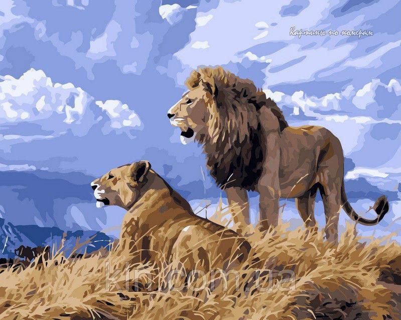 Картина по номерам Babylon Львиный прайд VP126 40 х 50 см