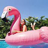 Детский надувной плот ФЛАМИНГО intex 142x137x см для плаванья в бассейне на море для пляжа 57558, фото 7