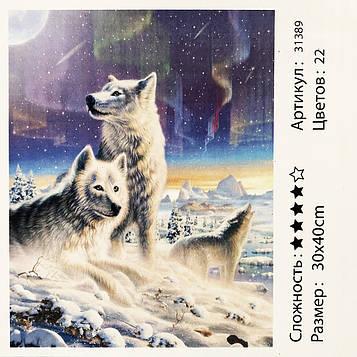 Картина за номерами: Північне сяйво. Розміри: 30 х 40 див. Малювання фарбами за номерами (SV)