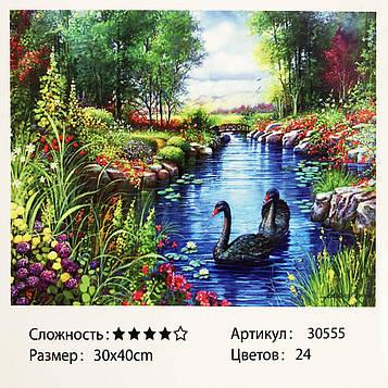 Картина за номерами: Чорні лебеді. Розміри: 30 х 40 див. Малювання фарбами за номерами (SV)