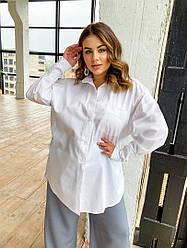 Біла жіноча блузка з довгим рукавом на гудзиках великі розміри