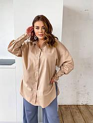Бежева жіноча блузка з довгим рукавом на гудзиках для повних