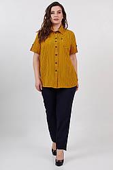 Сорочка ТМ ALL POSA Мікеллі жовтий 50 (100541)