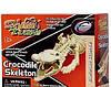 Eastcolight Конструктор «Скелет крокодила», 28202-EC