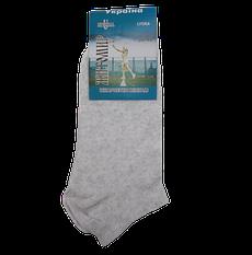 Короткі жіночі шкарпетки бавовна Універсальний 36-40 сірі