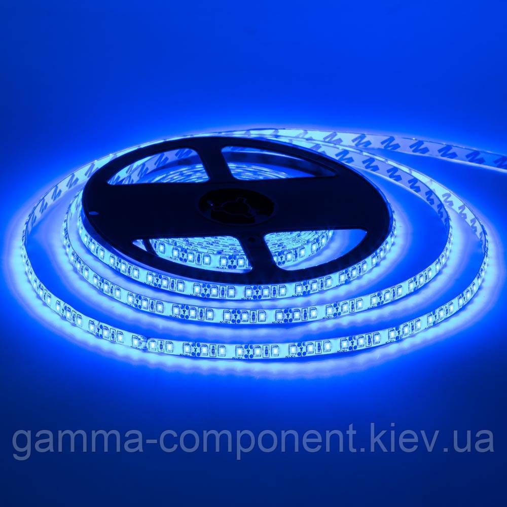 Світлодіодна стрічка SMD 2835 (120 LED/м), синій, IP20, 12В, бобіни від 5 метрів