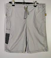 Чоловічі літні бриджі Розмір XS 164 (1057)