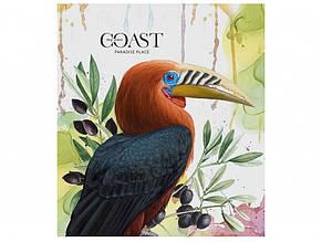 Зошит 60 аркушів клітинка Star Paradise birds вибірковий УФ-лак (10) (80) 060-2966 K