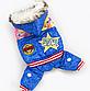 Зимний комбинезон STAR для маленьких собак, фото 3