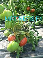 Нефис f1 Супер Раннеспелый, высокоурожайный розовоплодный гибрид (NEFİS F1)