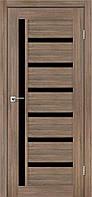 Двері LEADOR модель AMARONI скло