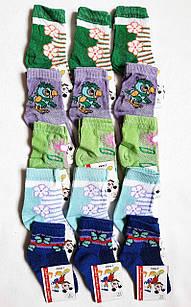 Шкарпетки дитячі бавовна сіточка на дівчаток р. 12. Від 6 пар по 5грн